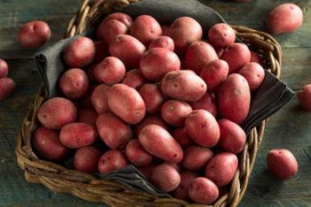 Pomme de terre Désirée (5kg) Chair tendre (purée-frites-soupe)